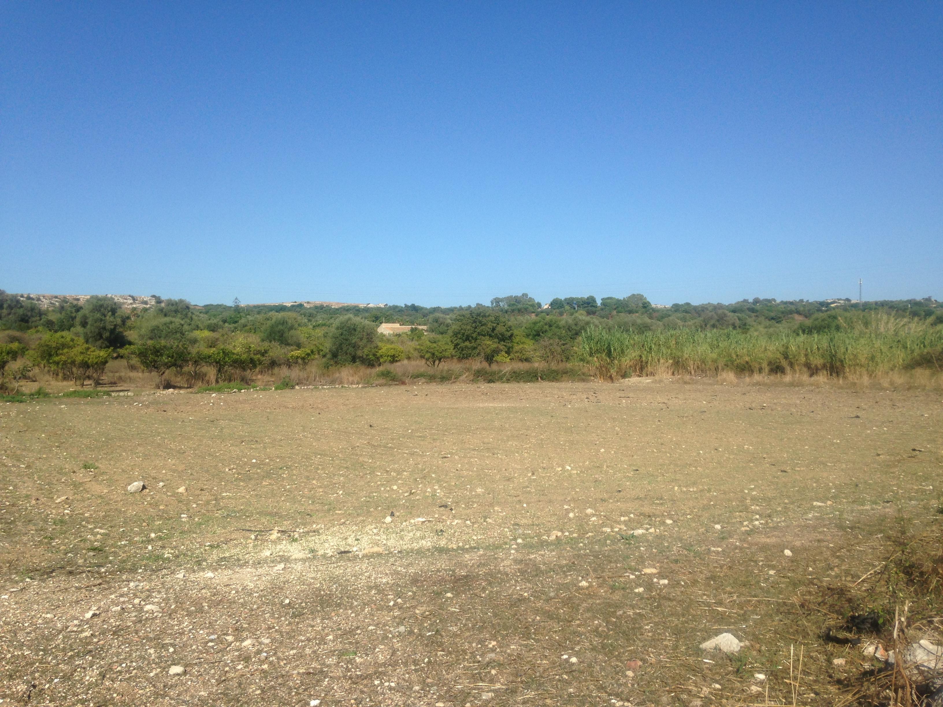 Terreno agricolo in Zona Carancino